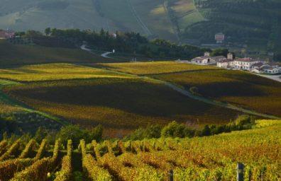 Wine Resort Emilia Romagna 2