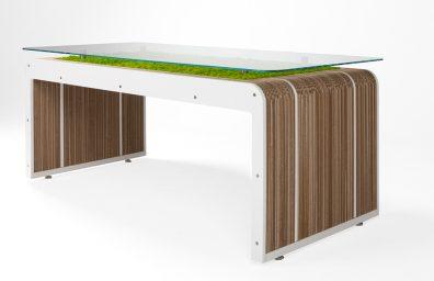 More Desk Plus live with lichens